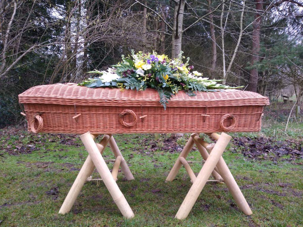 Willow Pod Coffin